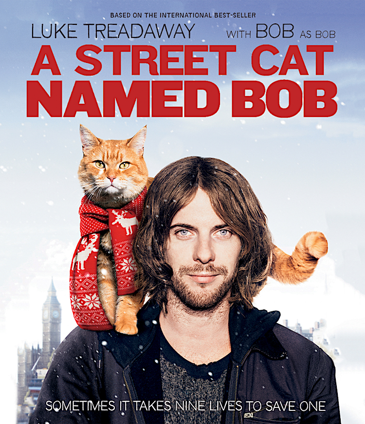 A Street Cat Named Bob out on Blu-ray